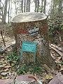Lawachara National Park Srimongol Sylhet Bangladesh 3.JPG