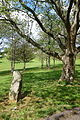 Lawn with milestone - National Road Museum - DSC02780.JPG