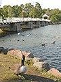 Le pont à lentrée du musée de plein air de Seurasaari (Helsinki) (2758564189).jpg