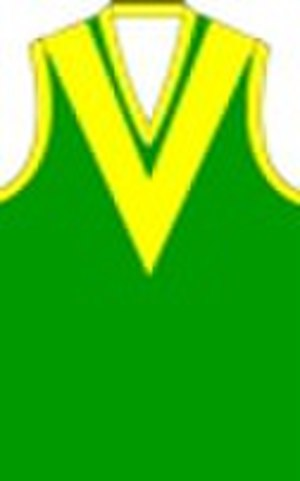 Heathcote District Football League - Image: Leongatha Football Club Jumper