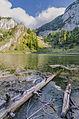 Liqenat, Rugove.jpg