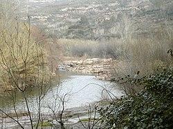 Llobregat 4.jpg