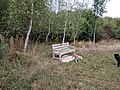 Long shot of the bench (OpenBenches 8315-1).jpg