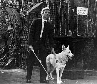 Longstreet (TV series) - James Franciscus as Longstreet, 1971.
