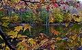 Looking through tree autumn leaves lake - West Virginia - ForestWander.jpg