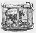 Louis Pasteur Tierversuchen (M Renourad - Illustration - 1884).jpg