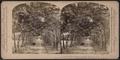 Lovers' Lane, West Point, N. Y., U. S. A., by Underwood & Underwood.png