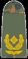 Luftwaffe-311-Brigadegeneral.png