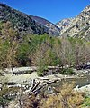 Lytle Creek, Mt Baldy 3-13 (17367391596).jpg