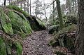 Mårtaskogen januari 2012.jpg