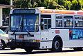 MUNI 8041.JPG