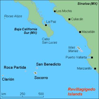 Roca Partida island