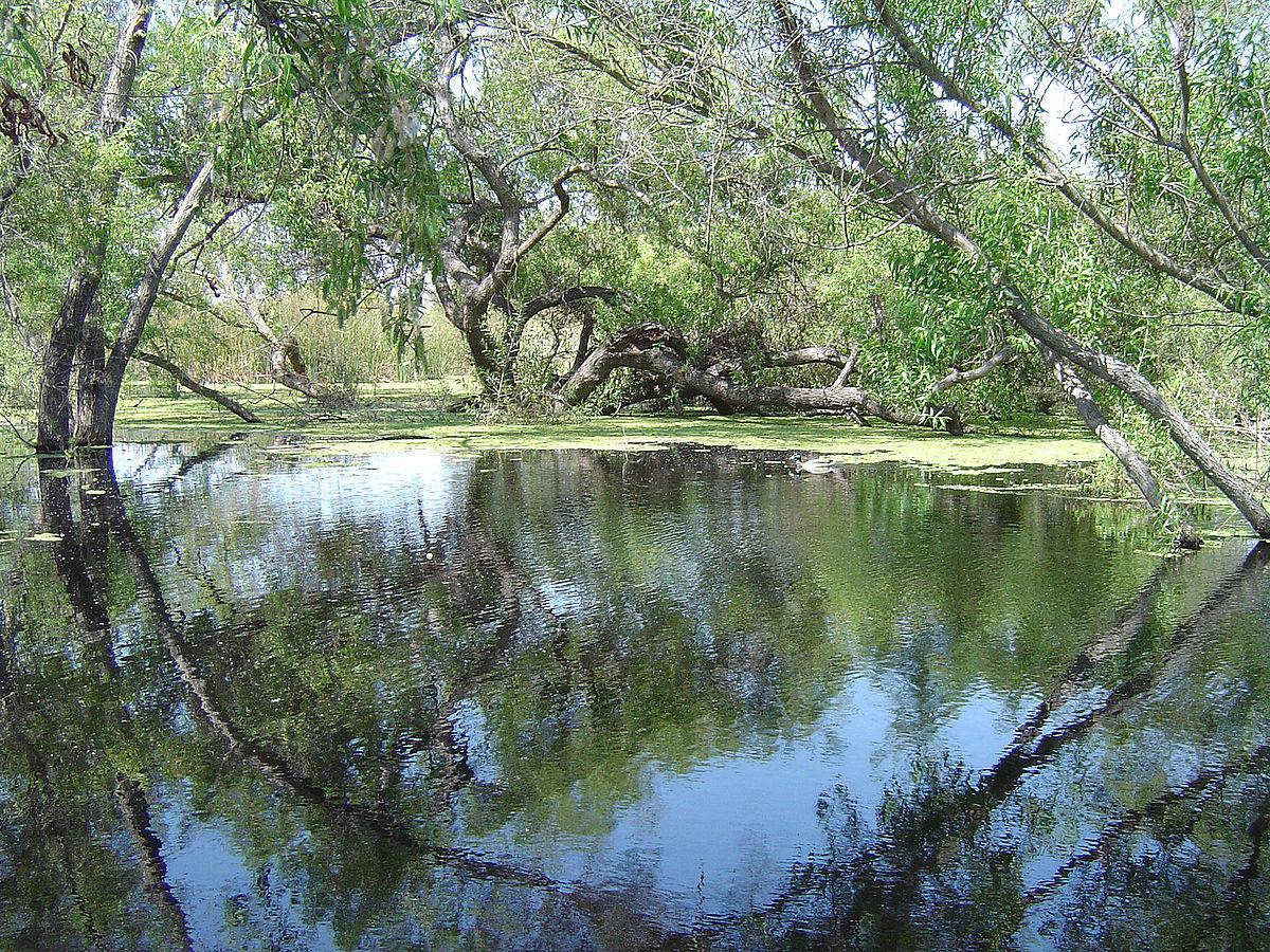 Spring Lake South Cerney Property For Sale