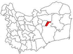 Location of Mahmudia
