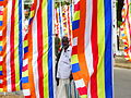 Man with Bunting, Jaffna.jpg
