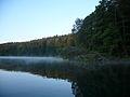 Maradki na jeziorem Piłakno.JPG