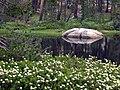 Mariposa County, CA, USA - panoramio (25).jpg