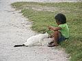 Marshall Islands PICT0460 (4745386262).jpg