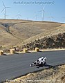 Maryhill Fall Freeride 2012 Double Luge.jpg