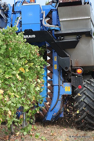 Braud (company) - Image: Mechanical harvester in Lombardy