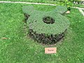 Medieval garden (Perugia) 48.jpg