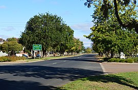 Merino King George VI Coronation Avenue 003.jpg