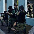 Mexican Army.jpg