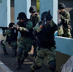 English: Mexican army in tactical gear and cur...