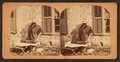 Mexican selling candy, by Doerr, H. A. (Henry A.), 1826-1885.png