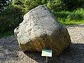 Migmatit - Fundort Südholstein.jpg
