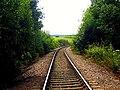 Mineral railway (Meden Vale) - geograph.org.uk - 940693.jpg