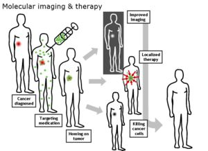 First Targeted Nanomedicine to Enter Human Clinical Studies