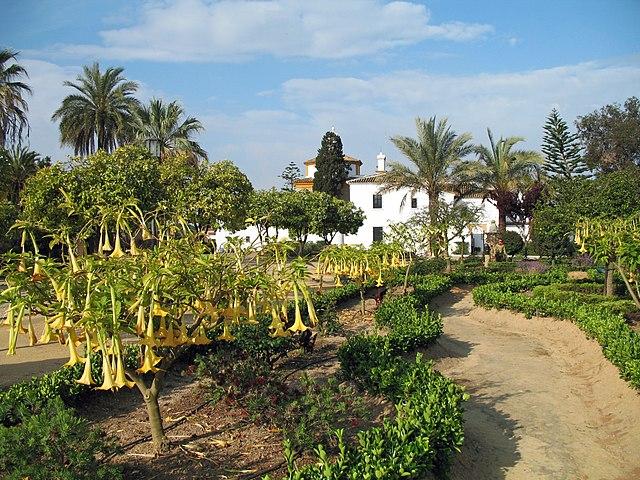 Jardín Botánico José Celestino Mutis Sehenswürdigkeit in Palos de la ...