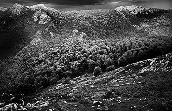 Monte de Pome.jpg