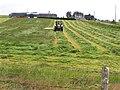 Mowing grass, Binnafreghan - geograph.org.uk - 1394390.jpg