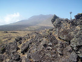 Mt. Cameroon old lava flows 2.jpg