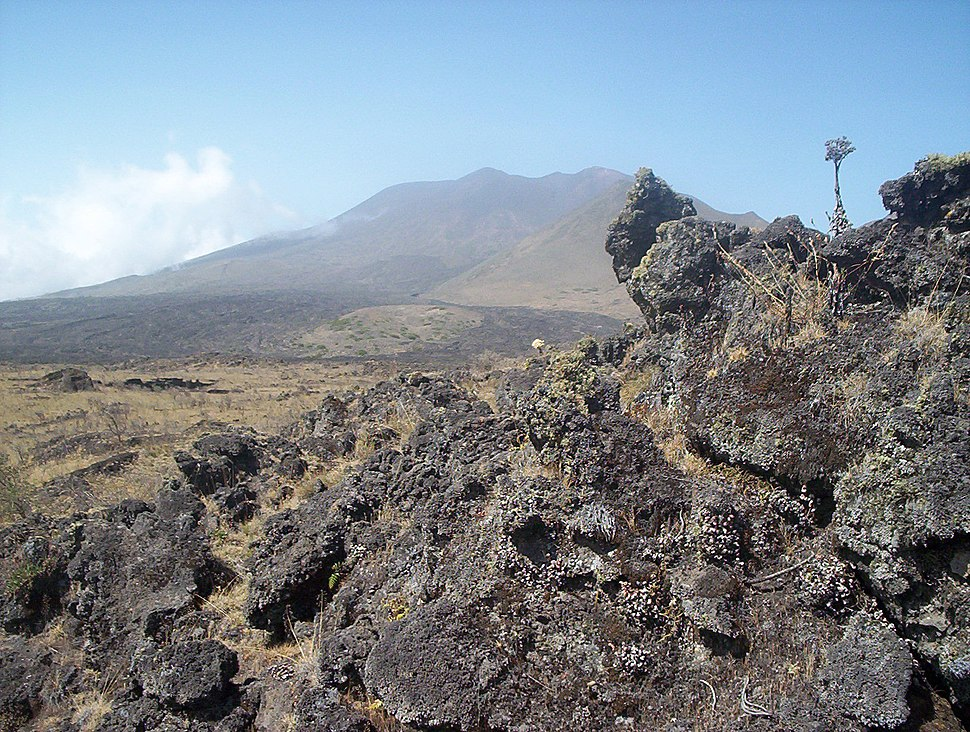 Mt. Cameroon old lava flows 2