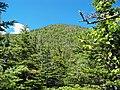 Mt. Moriah summit 1.JPG