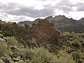 Mt. Pinter Base Loop, Tonto National Forest, Butcher Jones Trail, Fort McDowell, AZ 85264, USA - panoramio (97).jpg