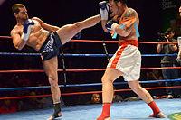 Muay Thai high kick.jpg