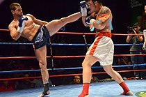 Muay Thai high kick.jpg