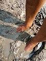 Mud foot.jpg