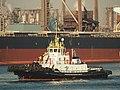Multratug 5 (tugboat, 2004) IMO 9350161, Calandkanaal pic1.JPG