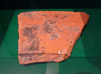 Argentoratum - Brick bearing the stamp of the Legio VIII Augusta, found in Rue du Dôme (Musée historique de Strasbourg)