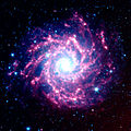 NASA's Spitzer Space Telescope View of M74.jpg
