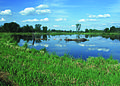 NRCSMI01009 - Michigan (4607)(NRCS Photo Gallery).jpg