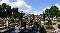 Nakło nad Notecią , widok z cmentarza - panoramio (1).jpg
