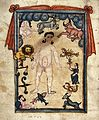 Naked man surrounded by the twelve symbols of the zodiac Wellcome L0031099.jpg
