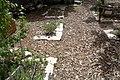 National Botanic Garden of Israel 19.jpg