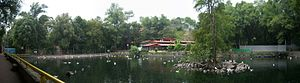 Fuentes Brotantes de Tlalpan National Park - Pond at Fuentes Brotantes de Tlalpan National Park.